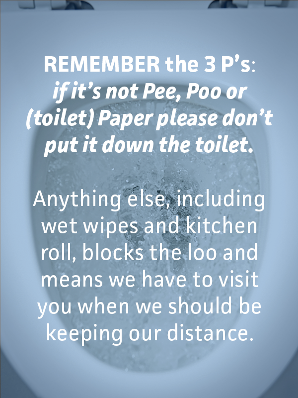 Only flush 'the three pees': pee, poo, and (toilet) paper!